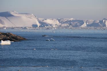 Calved glacier ice in Ilulissat, Greenland. Photo: Claus Grue/WCC